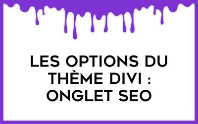 Focus sur l'onglet SEO des options du thème Divi