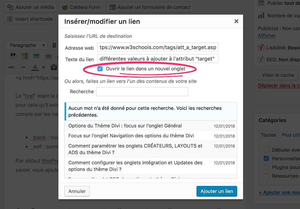 Ajouter un Target Blank dans un lien de WordPress