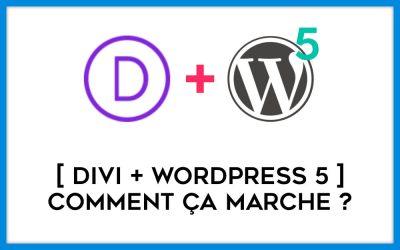 Divi + WordPress 5 : à quoi doit-on s'attendre ?