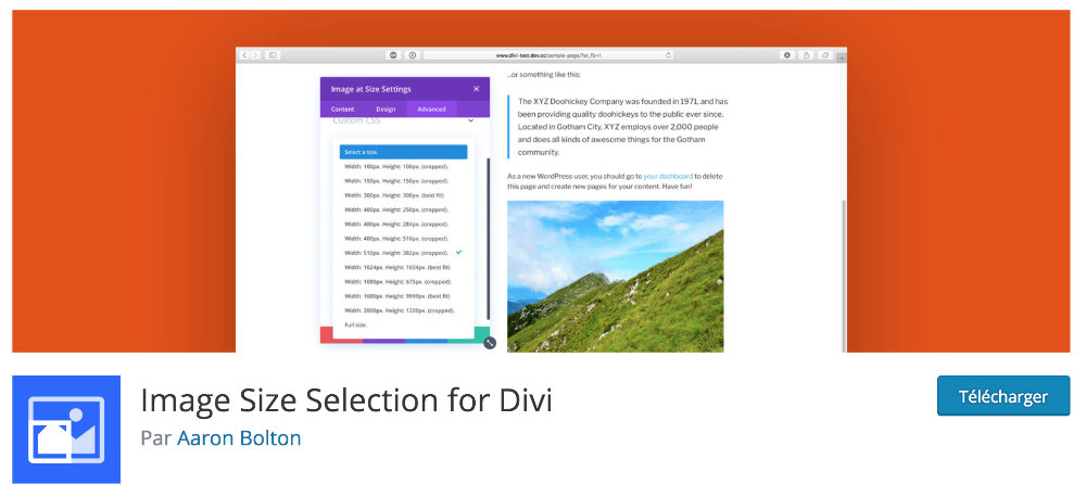 Plugin gratuit Divi : Image Size Selection