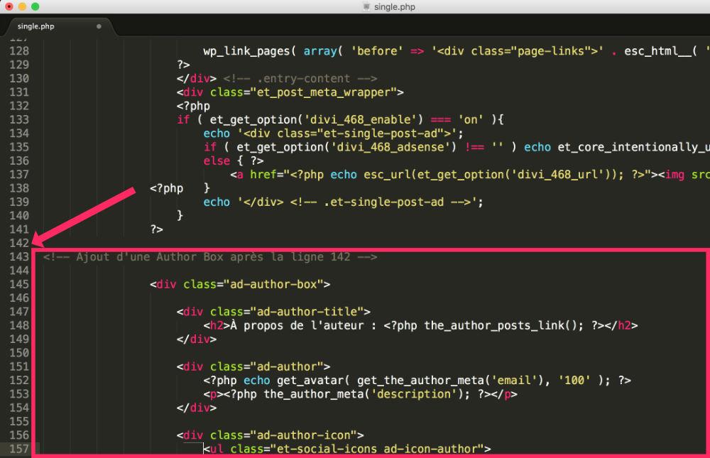 Code à ajouter dans le single.php