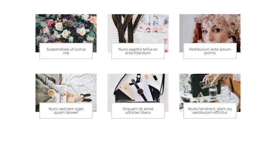 lara blog module