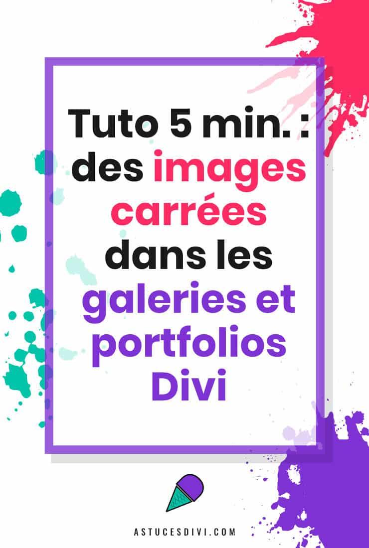 Galerie Carees Pin
