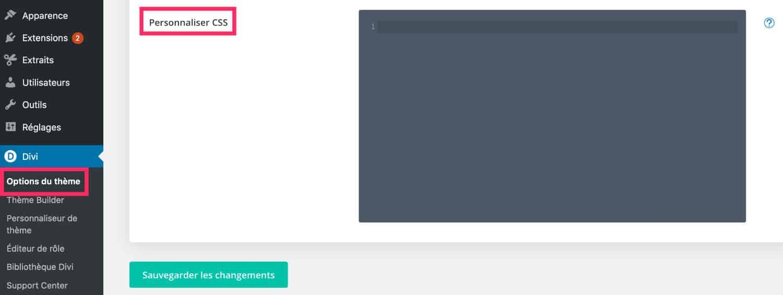 Option Theme Divi CSS